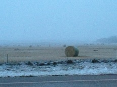 North of Swift Current