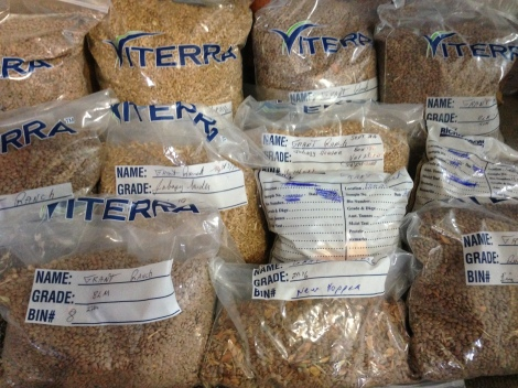 Labelled samples from each bin